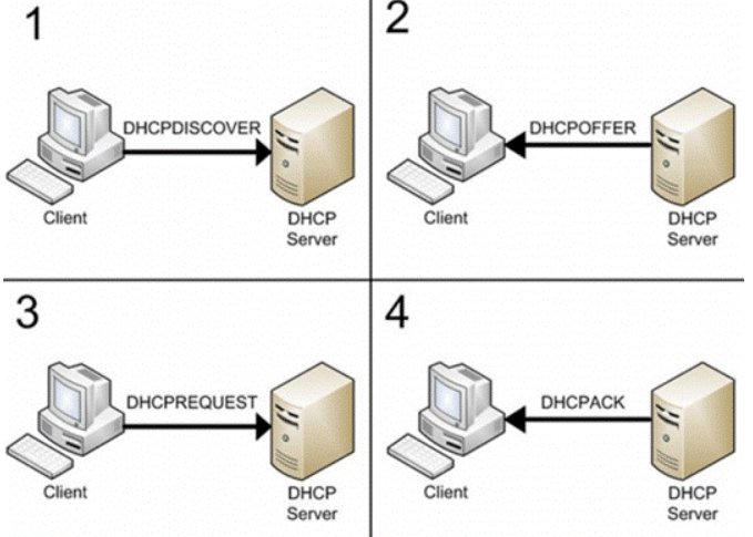 DHCP protocol