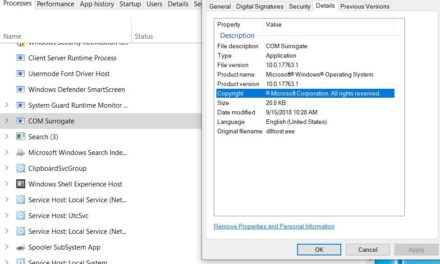What is the dllhost.exe COM Surrogate process in Windows 10,8,7?